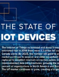 THE STATE OF IOT DEVICE 2019
