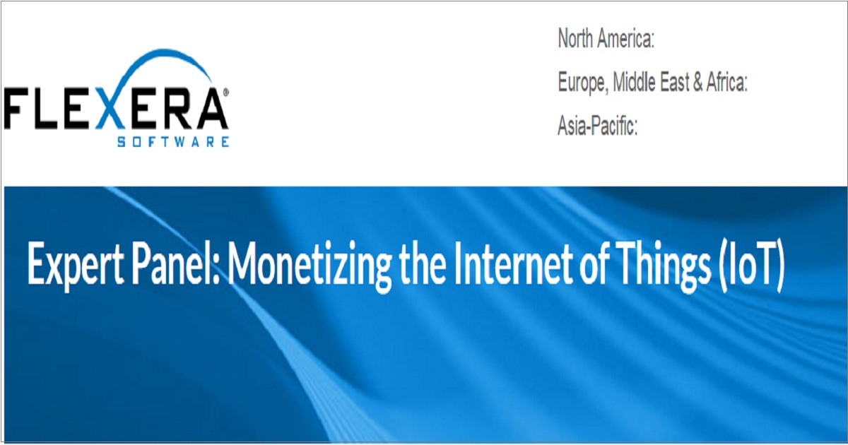 Monetizing the Internet of Things (IoT)