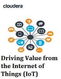 DRIVING VALUE FROM THE INTERNET OF THINGS (IOT)