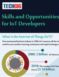 SKILLS AND OPPORTUNITIES FOR IOT DEVELOPERS